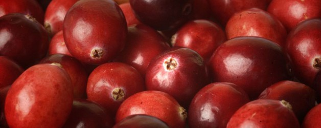 Veenbes-cranberry