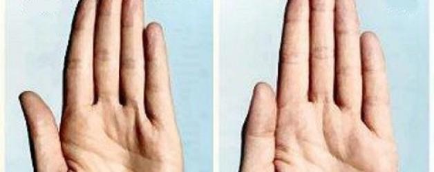 Handlezen- testoteron-test